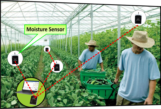 wireless sensor networks for greenhouse farming information technology essay He emphasizes that the information by itself is not feedback unless translated into  feedback is also central to the operations of genes and gene regulatory networks.