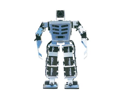 Intelligent Biped Robot